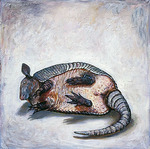 Armadillo by Elli Crocker Ms.