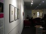 Steve Schuster Gallery Opening